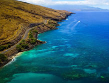 Hawaii Best Snorkel Location Coral Gardens