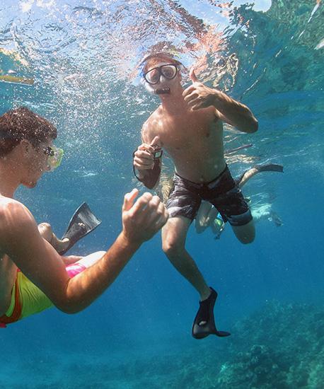 Best Afternoon Underwater Snorkel Tour