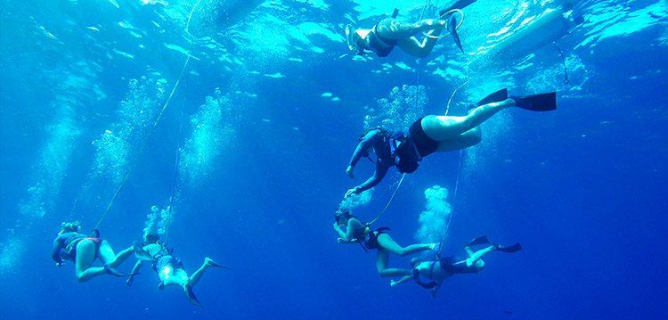 a group of SNUBA divers