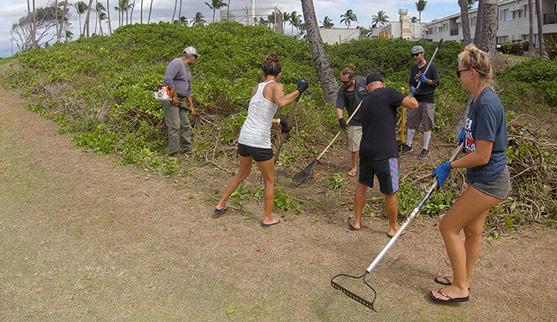 Maui Ocean Conservation