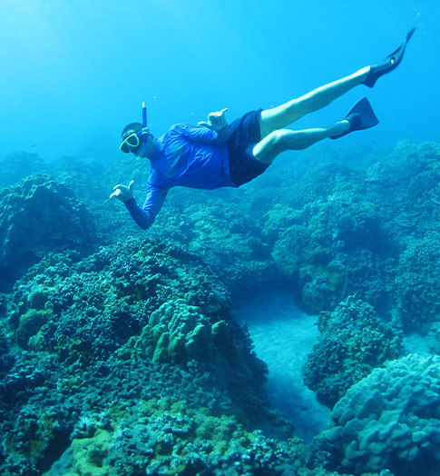 Maui Top Snorkeling Tour