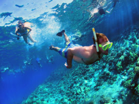 Maui Hawaii Coral Reef Snorkeling Excursion