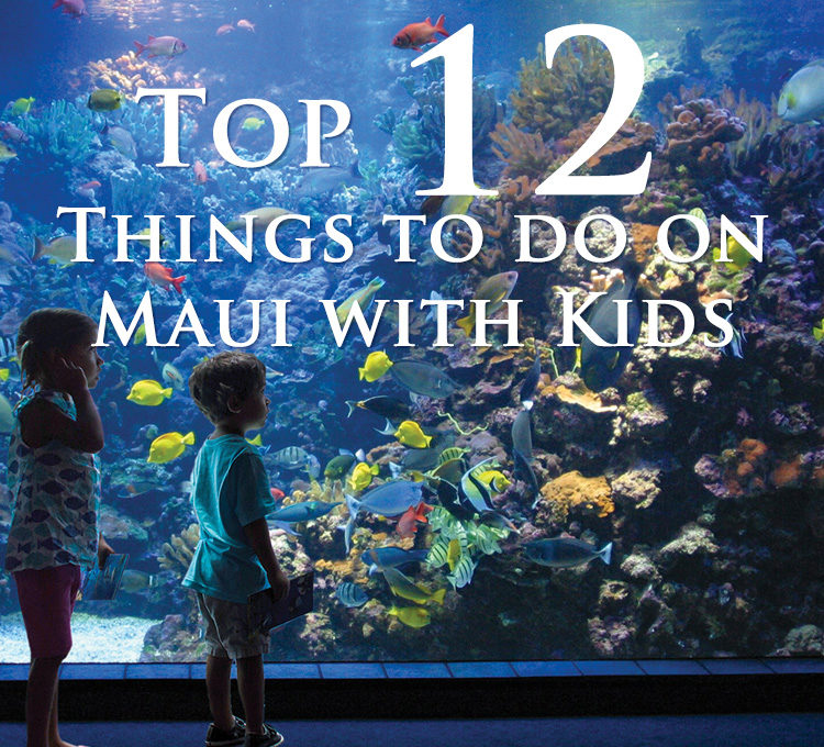 Top 12 Things To Do in Maui with Kids